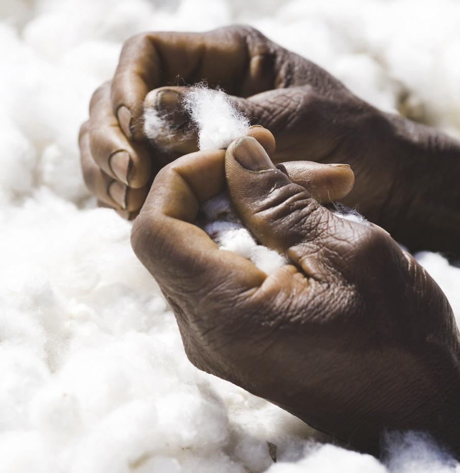 Comprar en el comercio justo asegura el cumplimiento de los Derechos Humanos